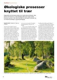 Økologiske prosesser knyttet til trær - Fagbladet Økologisk Landbruk