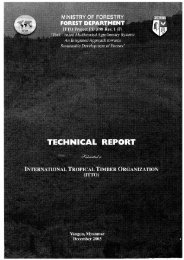 Technical Report - ITTO