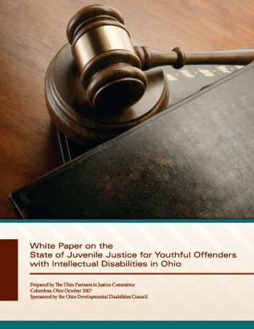 2008 White Paper-Juvenile Justice for Youthful Offenders - Ohio ...