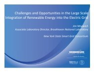 Challenges and Opportunities in the Large Scale Integration of ...