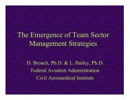 The Emergence of Team Sector Management Strategies - IPAC