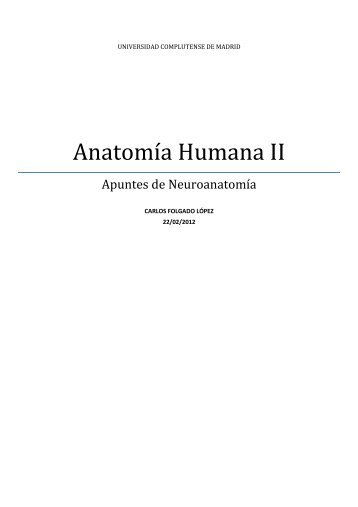ANATOMIA SISTEMA NERVIOSO.pdf - VeoApuntes.com