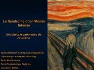 Syndrome d'un Monde Intense - LASA - EPFL