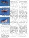 Revista Biotecnologia - Page 3
