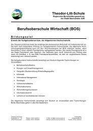 Infoblatt - Theodor-Litt-Schule - Stadt Neumünster