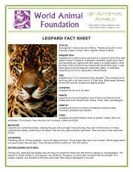 LEOPARD FACT SHEET - World Animal Foundation