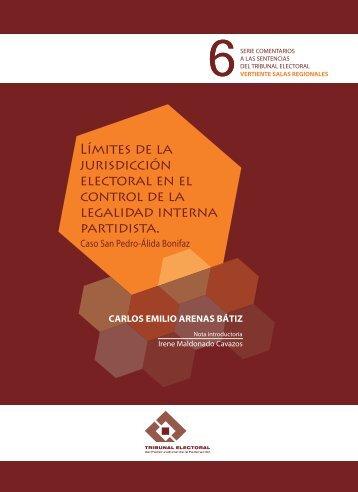 Límites de la jurisdicción electoral en el control - Tribunal Electoral ...