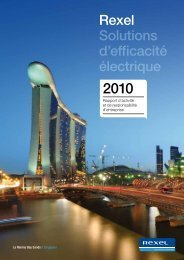 Rapport d'activité 2010 - Rexel