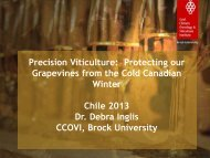 Precision Viticulture: Protecting our Grapevines from the Cold ... - Fia