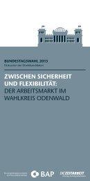 der arbeitsmarkt im wahlkreis odenwald - BAP