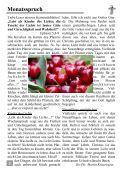 08/13 - Kirchspiel Magdala/Bucha - Page 2