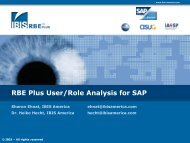 RBE Plus User/Role Analysis for SAP - IBIS Prof. Thome
