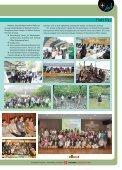 is the symbolic tree of Kasetsart University. Thai - Page 5