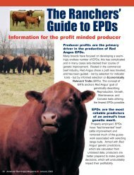 2007 EPD Final.qxd - Red Angus Association of America