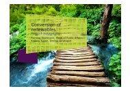 Conversion of renewables - Novozymes