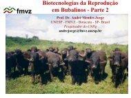 Biotecnologia da Reprodução em Bubalinos - Unesp