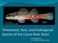 Threatened, Rare, and Endangered Species of the Coosa River Basin