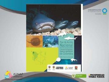 Presentación de PowerPoint - Fundación SQUALUS