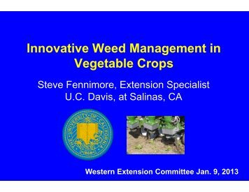 Innovative Weed Management in Vegetable Crops - Agricultural ...