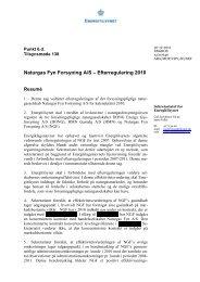 NGF - 2010 - Energitilsynet