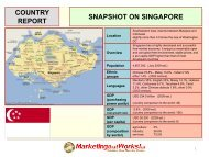 country report snapshot on singapore - Marketing that Works