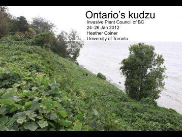 Ontario's kudzu - Invasive Plant Council of BC