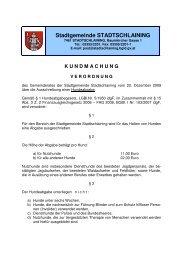 Stadtgemeinde STADTSCHLAINING