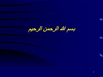 Islam El-Ghonaimy.pdf - UNU-WIDER - United Nations University