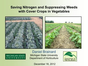 Saving Nitrogen and Suppressing Weeds with Cover Crops in ...