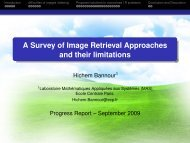 A Survey of Image Retrieval Approaches and their limitations