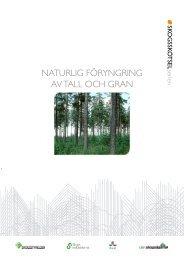 Naturlig föryngring av tall och gran, 135 sidor - Skogsstyrelsen