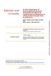 Activator from Actinomyces - Infection and Immunity