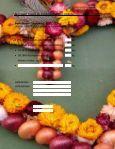 Angebot Zibelemärit Kü-fe Zwiebeln e-mail Version - Gourmador ... - Seite 2