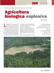 Novembre 2010 Agricoltura biologica esplosiva - Geologico