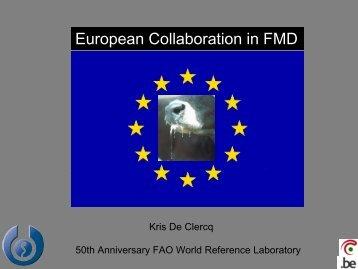 European Collaboration in FMD