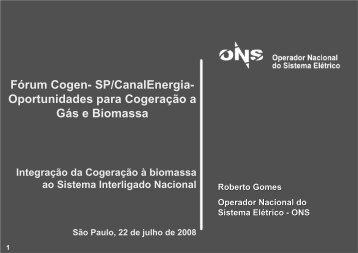 Oportunidades para Cogeração a Gás e Biomassa - Cogen