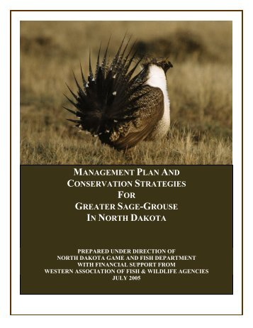 Management Plan and Conservation Strategies for Greater Sage