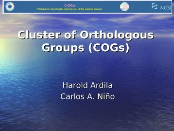 Cluster of orthologous Groups (COGs)