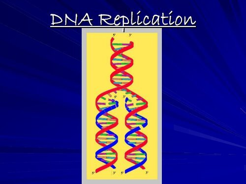 DNA Replication ppt