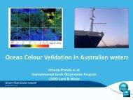 Ocean color remote sensing