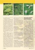 Resistenzentwicklung bei Schädlingen - Bayer CropScience - Seite 3