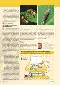 Resistenzentwicklung bei Schädlingen - Bayer CropScience - Seite 4