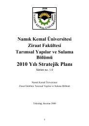 2010 Yılı Stratejik Planı - Namık Kemal Üniversitesi
