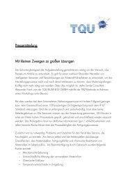 Mit kleinen Zwergen zu großen Lösungen - Tqu-group.com