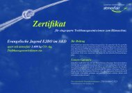 Zertifikat 27JUN11ABO225223 gemäß AX95520AX - EJBO