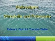 Makroalgen: Wirkstoffe und Potenziale