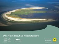 Weltnaturerbe Wattenmeer - Bundesverband Naturwacht eV