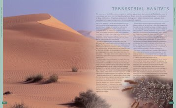 TERRESTRIAL HABITATS - UAE Interact