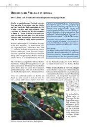 BIOLOGISCHE VIELFALT IN AFRIKA Der Anbau von Wildkaffee im ...