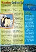 Pinguine - Young Panda - Seite 3